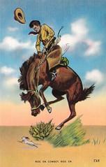 Ride Em Cowboy, Ride Em TX 8 (sdwalden6) Tags: postcards vintagemineralwellspostcard vintage antique retro oldmineralwellspostcard old oldpostcard cowboy rideem horse buckingbronco bronco texas tx