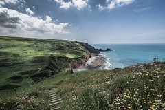 Cornish Steps!..... (johngregory250666) Tags: coast coastal path south west trail devon atlantic heartland point nikon d5200 nikkor 1024 summer june uk surf waves green blue water sky country landscape orange sea bay bluff cliff ocean grass rock beach animal people photoadd