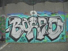 happy b. bear (en-ri) Tags: bored mp crew bianco nero azzurro verde 2018 parco dora torino wall muro graffiti writing