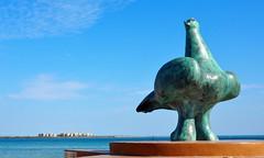 Ceci n'est pas un dodo mais une colombe ! (point-aveugle) Tags: mexique