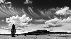 Pumice Desert (Michael Berg Photo) Tags: red michaelberg michaelbergphoto fuji fujifilm fujinon xpro2 23mm 23mmf2 blackandwhite bw panoramic panorama pumicedesert oregon desert craterlake