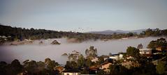 Morning mist (LaceLaw) Tags: sky mist morning lanscape