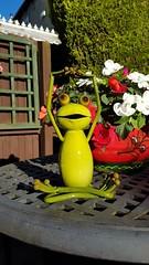 Yoga frog (I line photography) Tags: yoga yogafrog frog garden gardenornament patiofurniture plants sunshine plantpot flowers