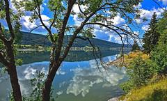Reflets dans le lac (Diegojack) Tags: lelieu vaud suisse d7200 nikon nikonpassion payages lac valléedejoux lacdejoux reflets miroir ciel nuages arbres groupenuagesetciel