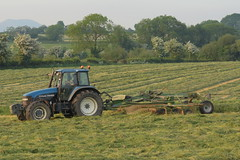 New Holland TM165 Tractor with a Krone TC880 Rake (Shane Casey CK25) Tags: new holland tm165 tractor with krone tc880 rake cnh nh blue newholland traktor traktori trekker tracteur trator ciągnik silage silage18 silage2018 grass grass18 grass2018 winter feed fodder county cork ireland irish farm farmer farming agri agriculture contractor field ground soil earth cows cattle work working horse power horsepower hp pull pulling cut cutting crop lifting machine machinery nikon d7200