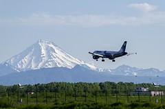 Aurora A319, Elizovo UHPP (Zhuravlev Nikita) Tags: aurora airbus a319 319 kamchatka spotting elizovo uhpp volcano vilyuchinskiy nature