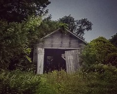 you don't know what you got  till it's gone.... (BillsExplorations) Tags: abandoned abandonedfarm garage farm overgrown open weathered forgotten ruraldecay country old green door wisconsin abandonedwisconsin