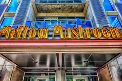 mellow_mushroom (gerhil) Tags: travelphotography travel architecture building exterior outsise signage sign letters color bold restaurant downtown charlotte clt delicious window graphic design