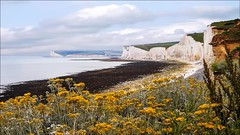 The Birling Gap & The Seven Sisters (Elaine 55.) Tags: birlinggap sussex