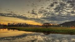 Pôr do Sol Parque Barigui (clodo.lima) Tags: pordosol sunset parquebarigui curitiba lake lago reflexo fimdetarde espetaculo