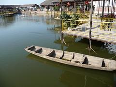 scene of fish pond (Edmundo lameiras) Tags: fish pond
