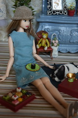 Hello, Sweet Doggie (Girl Least Likely To) Tags: momoko sekiguchi closeclippedsheep dolls toys asianfashiondolls japanesetoys miniatures dollhouse dollscene diorama dollroom livingroom dresses