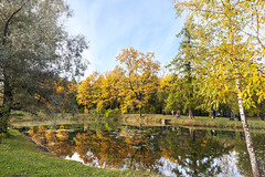 The Golden Lake. (fedoseenko) Tags: санктпетербург россия красота colour природа nature beauty blissful loveliness beautiful saintpetersburg sunny art shine dazzling light russia day green park peace tree trees garden blue white голубой небо лазурный color sky pretty sun пейзаж landscape lake clouds river water waves view heaven mood serene golden reflection вода река grass field wood autumn gold feodorovsky пейжаз федоровский colours alley town outdoors picture отражение облака архитектура озеро