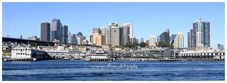 Sydney docks