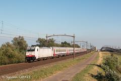La Traxx 2845 avec un train SNCB roulant pour la formation de conducteurs (Sylvain COSTES) Tags: autrespays dordrecht hollande train
