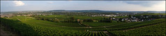 Day 195 (kostolany244) Tags: 3652018 onemonth2018 july day195 1472018 kostolany244 samsunggalaxys5 europe germany geo:country=germany month panorama rheingau landscape 365the2018edition