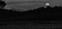 Last Super Moon of 2015 (Douglas H Wood) Tags: super moonrise sanfrancisco peaks snow coconino national forest williams jct arizona blackwhite landscape mountains