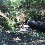 Stormwater pipe upgrade work thumbnail