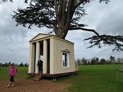 Tree House. (jenichesney57) Tags: building tree croomepark worcestershire grass landscape sky blue trunk branches people panasoniclumix adam architecture richard alton£