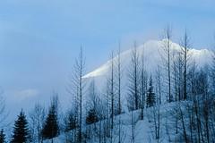 10368.tif (rah66_l) Tags: mountain winter snow fog glaciernationalpark canada international