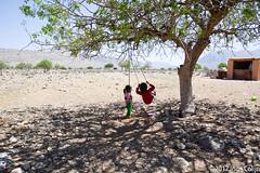 20180330-_DSC0101.jpg (drs.sarajevo) Tags: sarvestan ruraliran iran nomads farsprovince chamsatribe