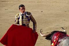 Détails de Ceret 2017 (aficion2012) Tags: ceret france francia corrida bull fight bullfight tauromaquia tauromachie toros toro taureaux escolar gill alberto aguilar torero toreador matador 2017 muleta catalogne catalunya cataluña