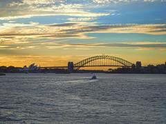 Sydney Bridge Sunset