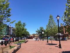 Fells Point -  beautiful wedding day (karma (Karen)) Tags: baltimore maryland fellspoint trees benches lamposts broadwaysquare hbm