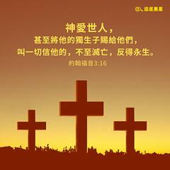 圣经金句- 神爱世人 (追逐晨星) Tags: 圣经金句 金句卡片 金句图片 十字架 神爱世人 约翰福音