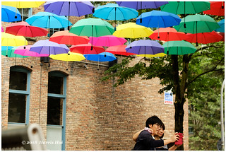 The Moment Together Under The Umbrella - Yaletown XP8082e