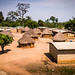 USAID_PRADDII_CoteD'Ivoire_2017-123.jpg