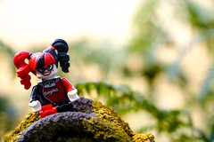 M34A1840 (scilly puffin) Tags: harleyquinn legography minifigure