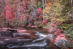Winding Mountain Stream (tclaud2002) Tags: stream brook mountain mountainstream fall foliage fallfoliage nature mothernature landscape country rural trees water northcarolina franklin usa outdoors greatoutdoors