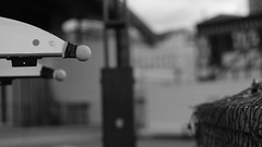 DSC06966 (A Common Courtesy) Tags: a common courtesy wellington auckland new zealand camera photo bw color black white day night monochrome bokeh sony nex 5a nex5a focuspeaking minolta mc pg 50mm 14rokkor fotodiox adapter