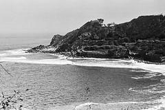 Gato Bask... (Cédric Bernard Photographies) Tags: longboard surf gato heroi analog côte basque lafitenia reef break waves