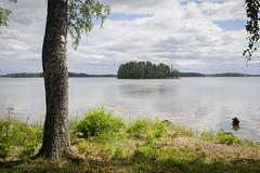 Pohdonsaari (Markus Heinonen Photography) Tags: pohdonsaari laukonselkä pyhäjärvi saari island järvi lake puu tree maisema landscape waterscape vesilahti suomi finland europe luonto nature