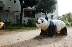 Estimated panda time... (Eric Flexyourhead) Tags: gion 祇園 higashiyama higashiyamaku 東山区 kyoto 京都市 kansai 関西地方 japan 日本 city urban detail fragment playground panda ricohgr