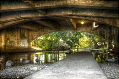 Under the Overpass (ScottElliottSmithson) Tags: scottelliottsmithson path creek river hdr albany oregon northwest underpass bridge bridges hdrbridge dtwpuck smithson scottsmithson canon eos eos7d 7d duck ducks
