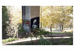 LESGEANTSDANDERLECHT # 3 (bruXella & bruXellus) Tags: mural graffiti urbanart lesgéantsdanderlecht anderlecht karting brussels brussel belgien belgique belgium belgië leicadlux3
