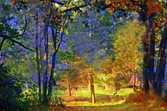 Peace with a Little Magic (Karen Kleis) Tags: arteffects digitalart photomanipulation trees sunlight peace magic sharingart