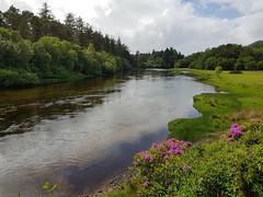 Scotland Day2 (becki1003) Tags: samsung phone bridge water sky trees landscape reflection