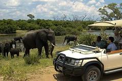 1. Chobe, Botswana, Day trip