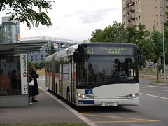 2009-06-05 - Lausanne, Grattapaille (lausanne1000) Tags: tl transports publics lausannois lausanne vaud suisse schweiz switzerland svizzera öffentlicher verkehr bus autobus trolleybus trackless trolley streetcar articulé articulated gelenkautobus solaris urbino