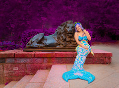 Una Sirena en Holstentor (david7101990) Tags: holstentor holstentorplatz mermaid sirena david7101990 david7101990gmailcom davephotography dave photography david torres nikon lübeck germany today