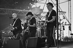 Lavilliers (Phil_Heck) Tags: concert musique guitariste orchestre rhinoférock watts artiste festival scène rock monochrome music