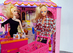 Ice Capades Barbie doll (alenamorimo) Tags: barbie barbiedoll barbiecollector market shopping superstar