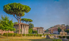 Cartoline da Roma, postcards from Rome (adrianaaprati) Tags: postcards temple antiquity mythology rome flowers oleander july summer trees roma