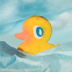 Eraser(s) (Helena Johansson 71) Tags: erasers macro macromondays duck rubberduck yellow nikond5500 d5500 nikon object everydayobject