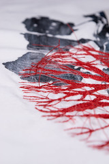 Of roots and branches, series. (Mónica Leitão Mota) Tags: screenprinting textileart fibreart trees motionfreestitching embroidery