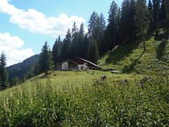 P7085456 (btristan) Tags: valdifiemme predazzo trentino lagorai gardonè mountain trees hut